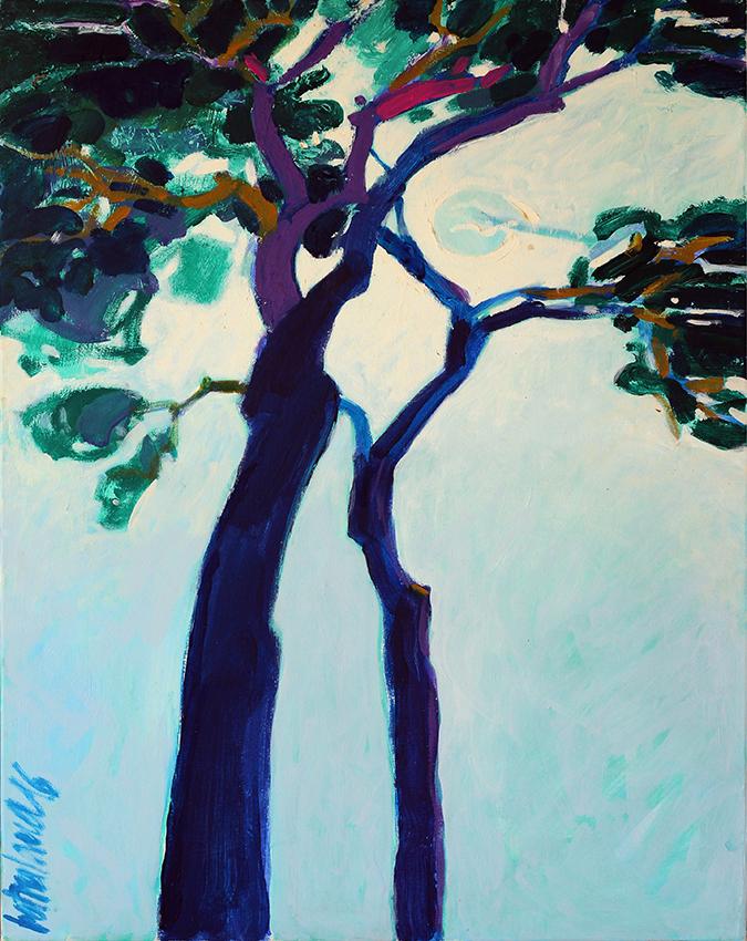 JY Bétoulaud- les pins du voisin