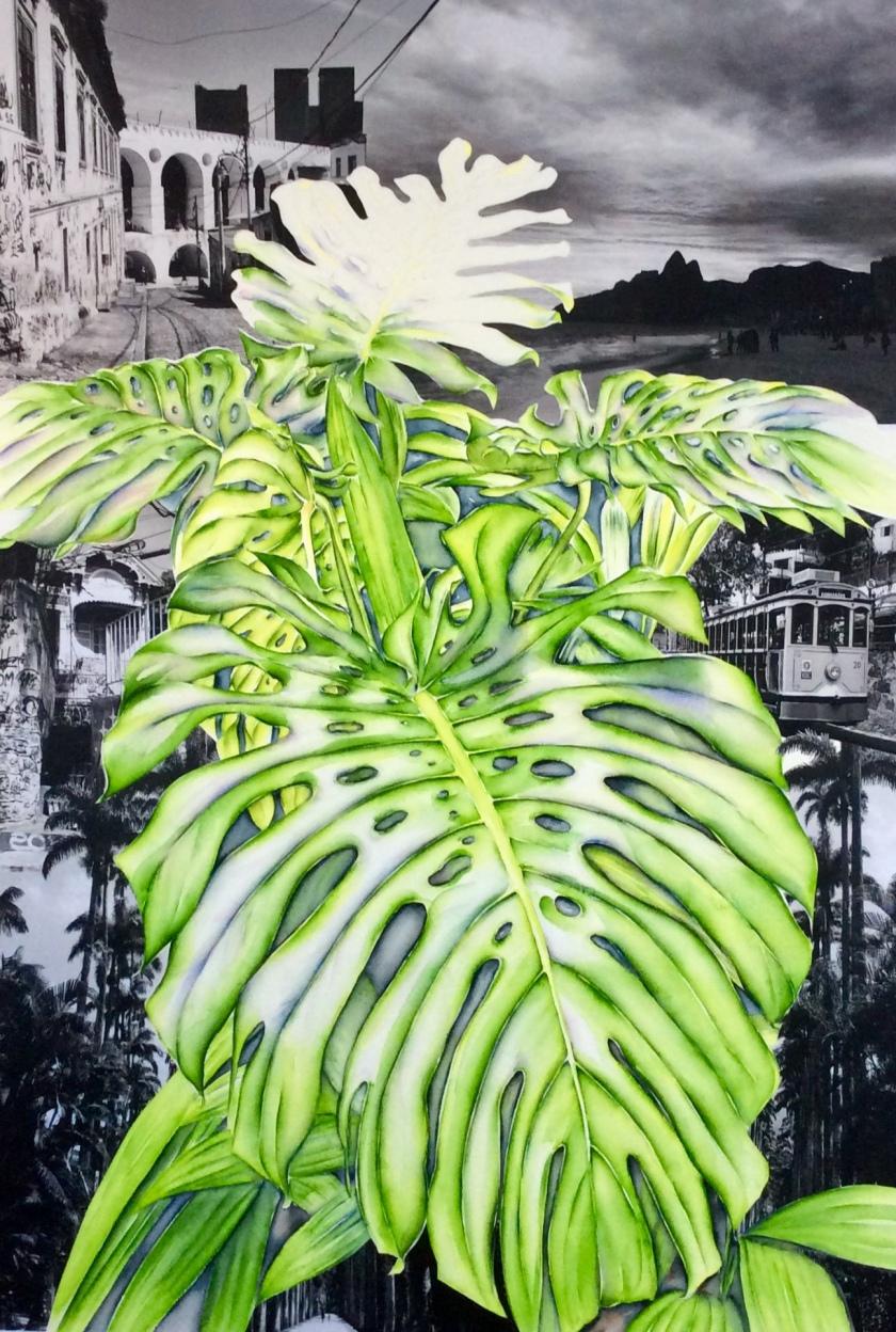Mathilde Wolff-Santa Tereza 60x90